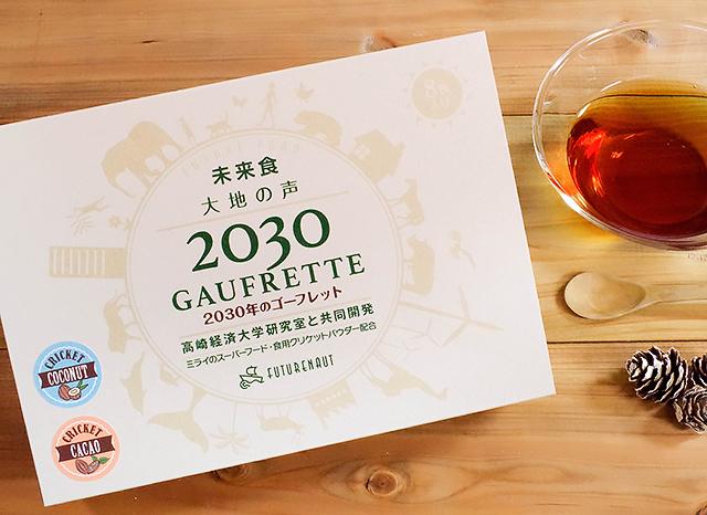 [生産終了]2030年のゴーフレット