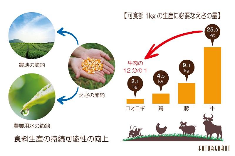 データ出典: Potential of insects as food and feed in assuring food security