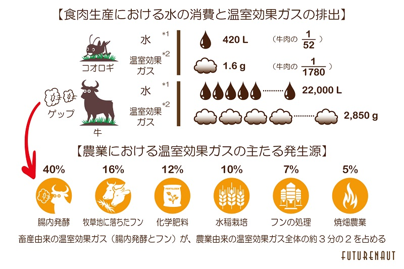 可食部1kgの生産に必要な農業用水の量、*2 体重1kgの増加に対する温室効果ガスの排出量