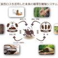 食品ロスを活用した未来の循環型養殖システム